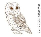 Stock vector brown owl 100012532