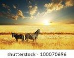 zebras at sunset | Shutterstock . vector #100070696