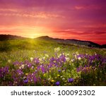 mountain landscape with flowers | Shutterstock . vector #100092302