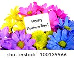 colorful mother's day flowers... | Shutterstock . vector #100139966