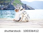 Stock photo happy baby girl with her dog on berth in summer 100336412