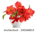 alstroemeria red flowers in... | Shutterstock . vector #100368815