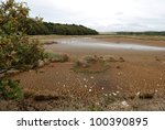 Low Water Levels In Water...