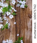 Spring Blossom Branch On A...