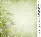 Spring Background With Snowdrops