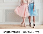 two girls are posing for a... | Shutterstock . vector #1005618796