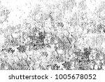 grunge black and white pattern. ... | Shutterstock . vector #1005678052