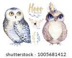 watercolor owl with flowers.... | Shutterstock . vector #1005681412