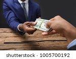 close up of businessperson... | Shutterstock . vector #1005700192