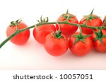 tomatoes on a withe background. | Shutterstock . vector #10057051