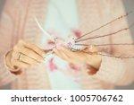 woman hands holding little... | Shutterstock . vector #1005706762