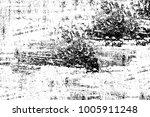 grunge black and white pattern. ...   Shutterstock . vector #1005911248
