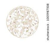 wholegrain crispbreads isolated ... | Shutterstock .eps vector #1005987508