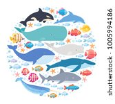 marine mammals and fishes set... | Shutterstock .eps vector #1005994186