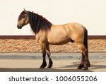 draft horse show at the... | Shutterstock . vector #1006055206