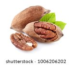 pecan nuts with leaf | Shutterstock . vector #1006206202