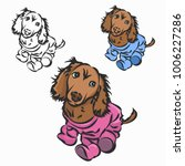 the puppy in the clothing  the...   Shutterstock .eps vector #1006227286