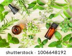fresh herbs  flowers and... | Shutterstock . vector #1006648192