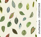 vintage botanical leaves.... | Shutterstock .eps vector #1006823368