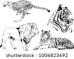 vector drawings sketches... | Shutterstock .eps vector #1006823692