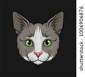head of grey cat  face of pet... | Shutterstock .eps vector #1006906876