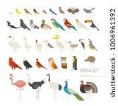 various kind of birds mega set... | Shutterstock .eps vector #1006961392