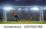 soccer goalkeeper in action on... | Shutterstock . vector #1007042788