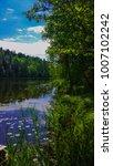 nature walks a park   Shutterstock . vector #1007102242
