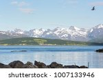 panorama on the beaches of... | Shutterstock . vector #1007133946