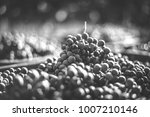 blue vine grapes. grapes for... | Shutterstock . vector #1007210146