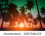 silhouette coconut palm trees... | Shutterstock . vector #1007246125