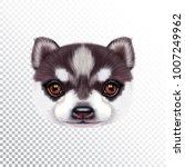 vector illustrated portrait of... | Shutterstock .eps vector #1007249962