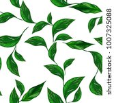 natural eco design with green... | Shutterstock . vector #1007325088