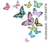beautiful color butterflies ... | Shutterstock . vector #1007346976