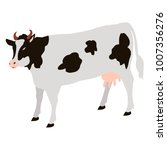 adult cow with black spots... | Shutterstock . vector #1007356276