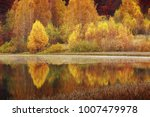 autumn is the most charming... | Shutterstock . vector #1007479978
