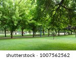 public park in spring with... | Shutterstock . vector #1007562562