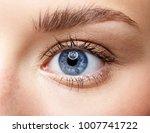 closeup macro portrait of... | Shutterstock . vector #1007741722