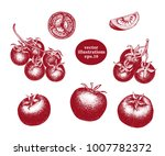 hand drawn set of tomato and... | Shutterstock .eps vector #1007782372