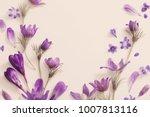 spring violet flowers on a... | Shutterstock . vector #1007813116