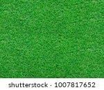 green grass texture | Shutterstock . vector #1007817652