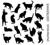 set vector silhouettes of the... | Shutterstock .eps vector #1007835445