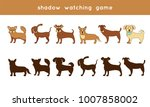 shadow watching game  different ... | Shutterstock .eps vector #1007858002