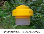 ecological insect and fly traps ... | Shutterstock . vector #1007880922