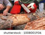 Timber Damaged By Bark Beetles...