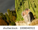 happy bride and groom   Shutterstock . vector #1008040522