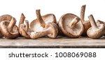 shiitake mushrooms on the... | Shutterstock . vector #1008069088