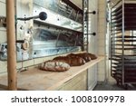 loafs of bread waiting on shelf ... | Shutterstock . vector #1008109978