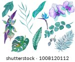 set of watercolor tropical... | Shutterstock . vector #1008120112
