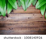 close up green leaves with... | Shutterstock . vector #1008140926